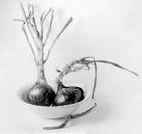 Red Onions in a Bowl